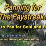 Panning for the gold paystreak - watch it